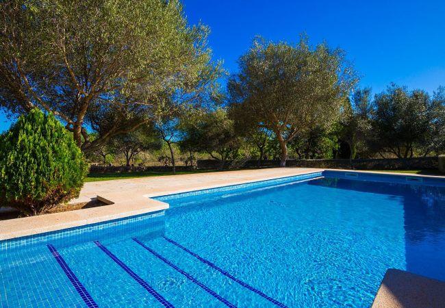 Ferienhaus Villa Cati in Arta with private pool and wifi (2045315), Arta, Mallorca, Balearische Inseln, Spanien, Bild 6