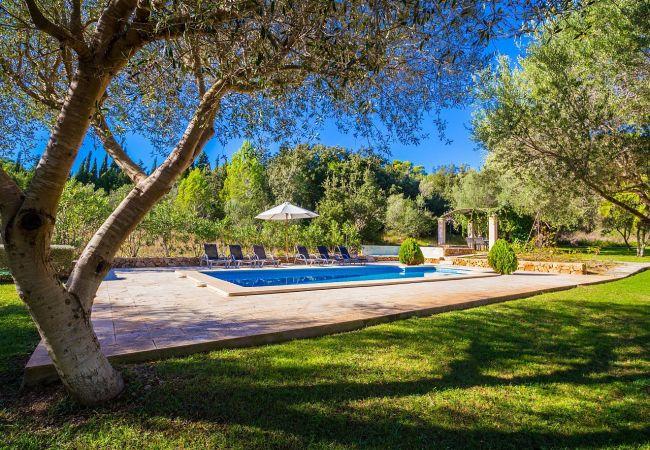 Ferienhaus Villa Cati in Arta with private pool and wifi (2045315), Arta, Mallorca, Balearische Inseln, Spanien, Bild 11
