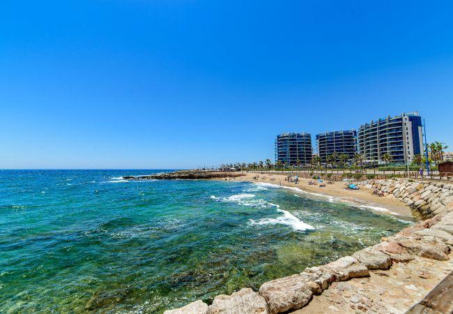 Ferienwohnung Holiday (2033545), Torrevieja, Costa Blanca, Valencia, Spanien, Bild 36