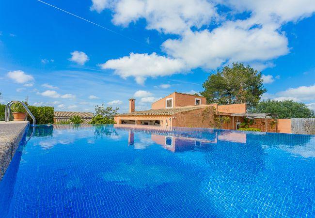 Holiday house Finca Can Tomeu (2074143), Montuïri, Majorca, Balearic Islands, Spain, picture 1