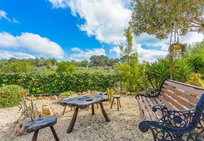 Holiday house Finca Can Tomeu (2074143), Montuïri, Majorca, Balearic Islands, Spain, picture 27