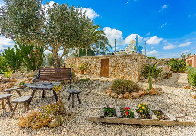 Holiday house Finca Can Tomeu (2074143), Montuïri, Majorca, Balearic Islands, Spain, picture 28