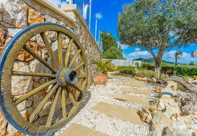 Holiday house Finca Can Tomeu (2074143), Montuïri, Majorca, Balearic Islands, Spain, picture 29
