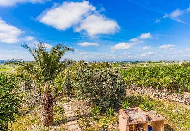 Holiday house Finca Can Tomeu (2074143), Montuïri, Majorca, Balearic Islands, Spain, picture 32