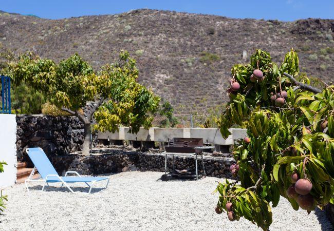Maison de vacances Finca Los Llanitos II (2176970), Los Gigantes, Ténérife, Iles Canaries, Espagne, image 19