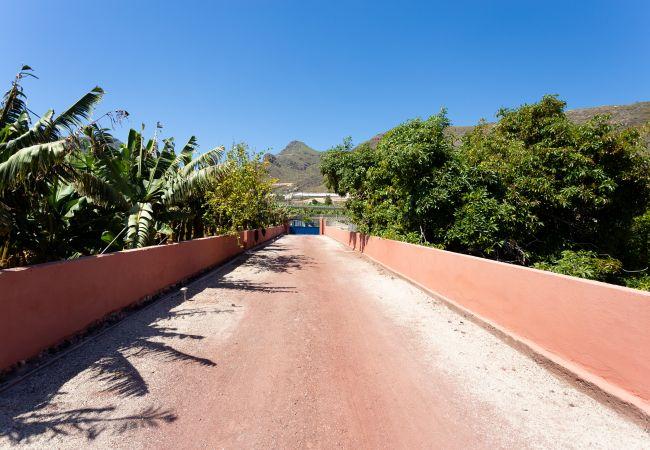 Maison de vacances Finca Los Llanitos II (2176970), Los Gigantes, Ténérife, Iles Canaries, Espagne, image 27