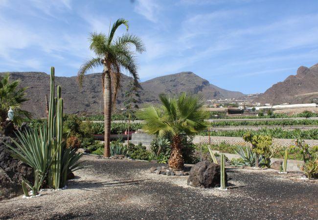 Maison de vacances Finca Los Llanitos II (2176970), Los Gigantes, Ténérife, Iles Canaries, Espagne, image 25