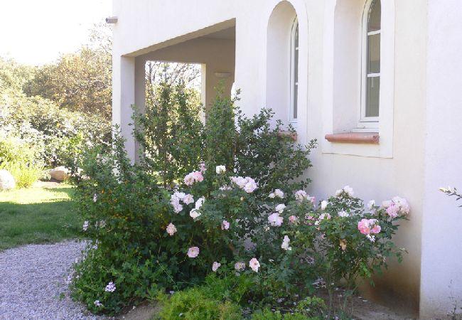 Ferienhaus Villa de charme face au Golfe de Calvi (2194889), Lumio, Nordkorsika, Korsika, Frankreich, Bild 9