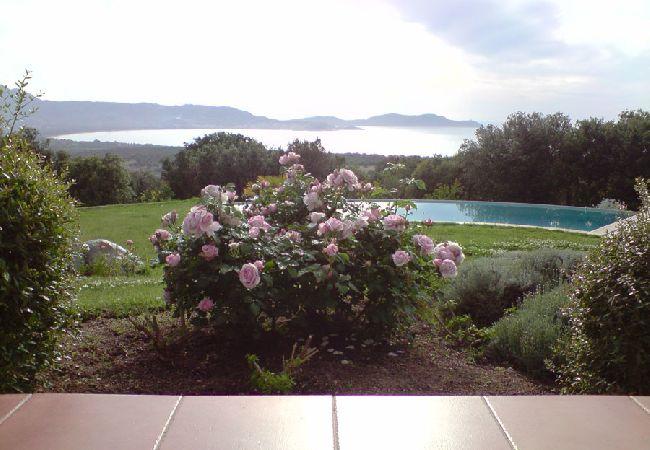 Ferienhaus Villa de charme face au Golfe de Calvi (2194889), Lumio, Nordkorsika, Korsika, Frankreich, Bild 11