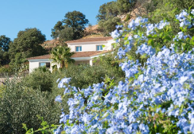 Ferienhaus Villa vue mer panoramique près de Calvi (2194935), Lumio, Nordkorsika, Korsika, Frankreich, Bild 4