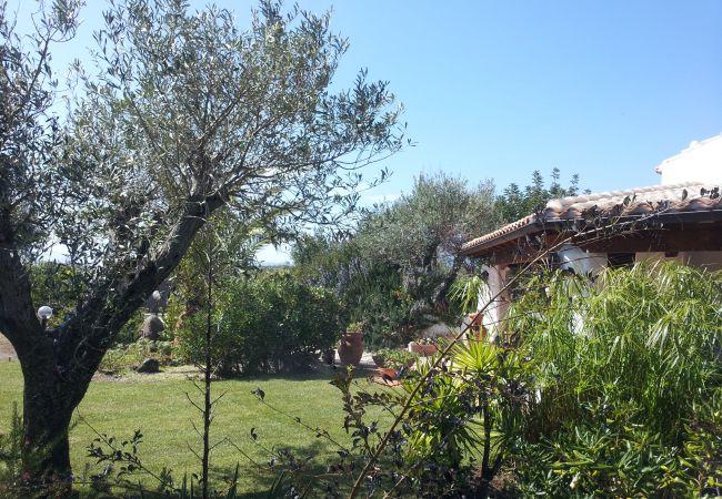 Holiday house Casa dell'Artista (2241032), Orosei, Nuoro, Sardinia, Italy, picture 40