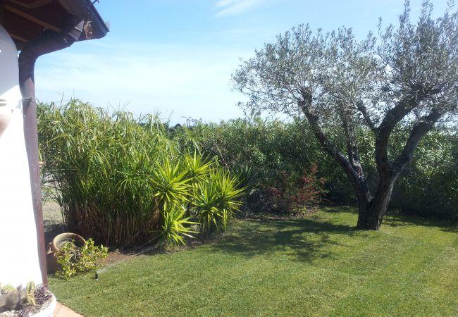 Holiday house Casa dell'Artista (2241032), Orosei, Nuoro, Sardinia, Italy, picture 3