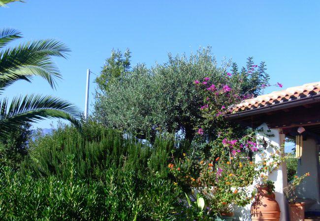 Holiday house Casa dell'Artista (2241032), Orosei, Nuoro, Sardinia, Italy, picture 41