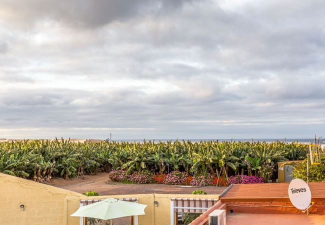 Ferienhaus GC15 VILLA RURAL PRIVATE POOL (2176907), Sardina, Gran Canaria, Kanarische Inseln, Spanien, Bild 25
