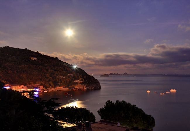 Holiday apartment Caruso 1 Apartment (2245766), Sorrento, Amalfi Coast, Campania, Italy, picture 12