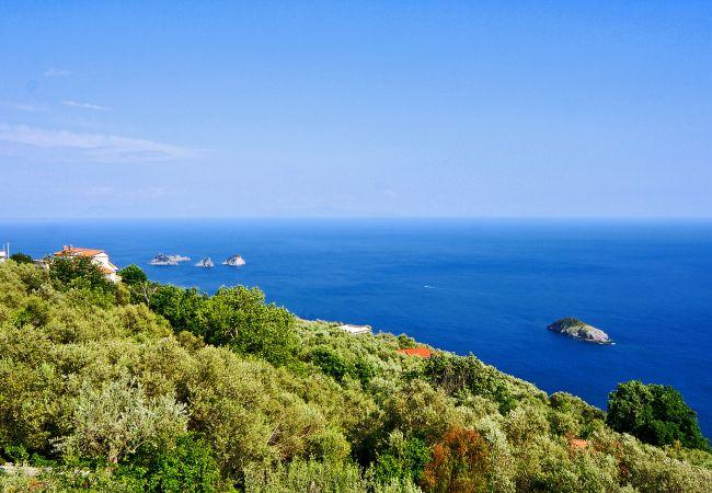 Holiday apartment Caruso 1 Apartment (2245766), Sorrento, Amalfi Coast, Campania, Italy, picture 14