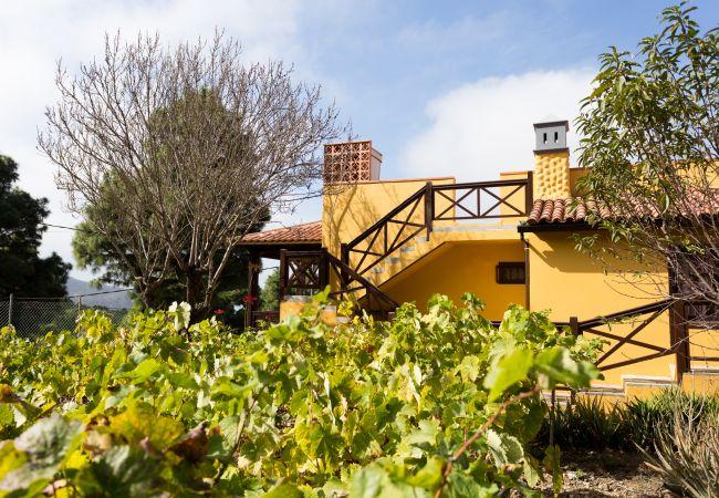Maison de vacances Finca Casa Yaya (2176973), Icod de los Vinos, Ténérife, Iles Canaries, Espagne, image 3