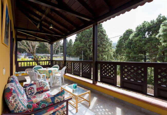 Maison de vacances Finca Casa Yaya (2176973), Icod de los Vinos, Ténérife, Iles Canaries, Espagne, image 9