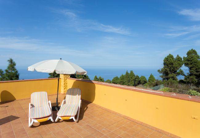 Maison de vacances Finca Casa Yaya (2176973), Icod de los Vinos, Ténérife, Iles Canaries, Espagne, image 11