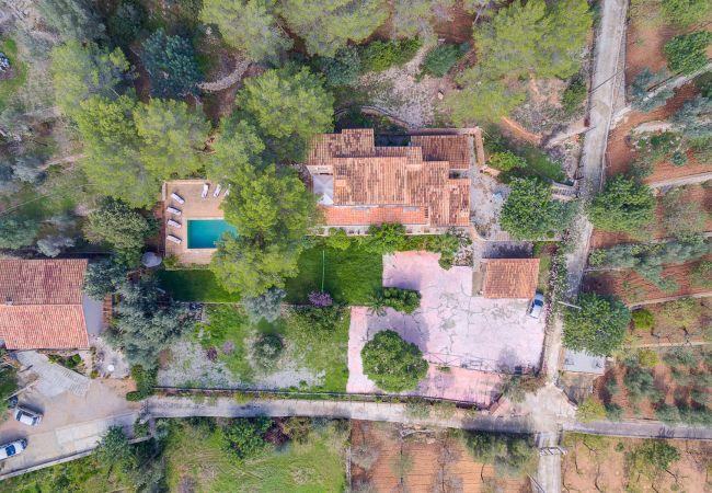 Maison de vacances VILLA ALARO by Priority (2302223), Alaro, Majorque, Iles Baléares, Espagne, image 29