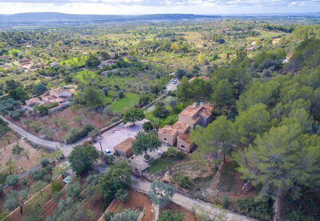 Maison de vacances VILLA ALARO by Priority (2302223), Alaro, Majorque, Iles Baléares, Espagne, image 30