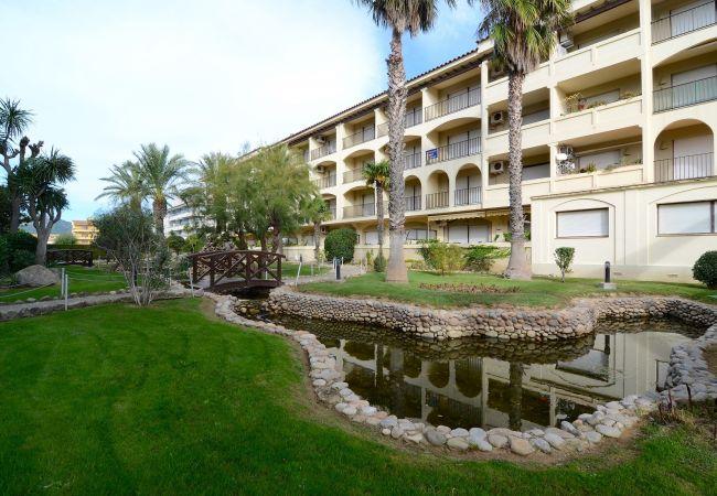 Ferienwohnung JADEMAR 050-B (2099259), Els Griells, Costa Brava, Katalonien, Spanien, Bild 5