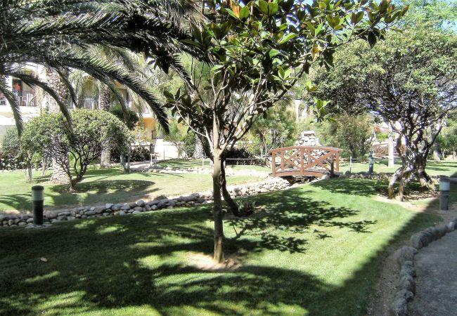 Ferienwohnung JADEMAR 138-C (2099252), Els Griells, Costa Brava, Katalonien, Spanien, Bild 11