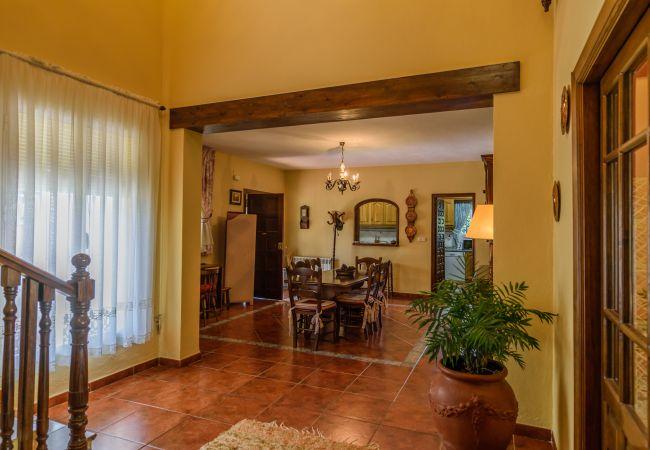 Ferienhaus Villa La Dehesa Baja (2334707), Alhaurin el Grande, Malaga, Andalusien, Spanien, Bild 37