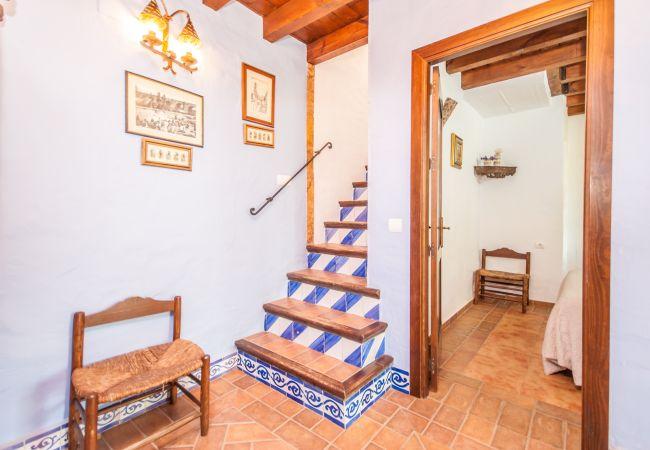 Ferienhaus Villa Miel Amarga (2334711), Alhaurin el Grande, Malaga, Andalusien, Spanien, Bild 27