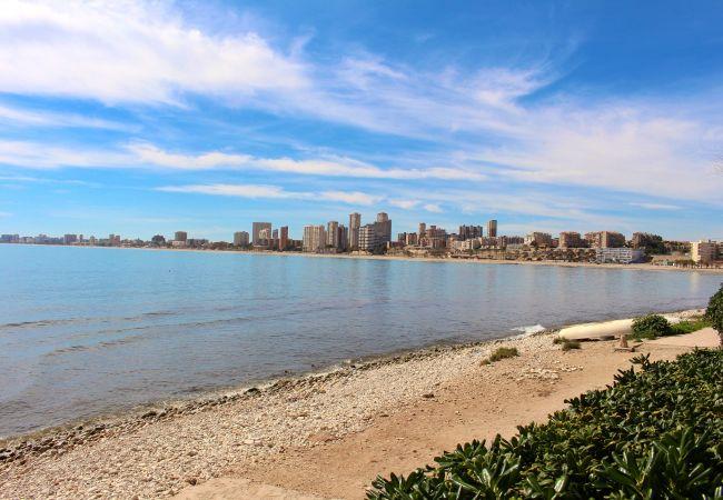 Appartement de vacances APARTAMENTO CABO AZUL (2117791), El Campello, Costa Blanca, Valence, Espagne, image 14