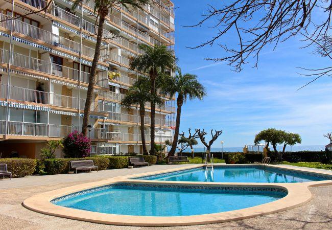 Appartement de vacances APARTAMENTO CABO AZUL (2117791), El Campello, Costa Blanca, Valence, Espagne, image 7