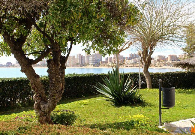Appartement de vacances APARTAMENTO CABO AZUL (2117791), El Campello, Costa Blanca, Valence, Espagne, image 6