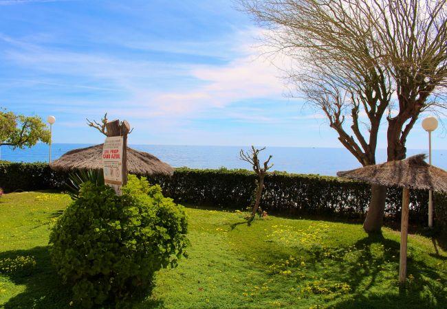 Appartement de vacances APARTAMENTO CABO AZUL (2117791), El Campello, Costa Blanca, Valence, Espagne, image 4