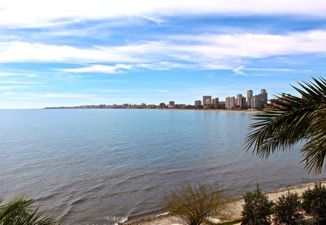Appartement de vacances APARTAMENTO CABO AZUL (2117791), El Campello, Costa Blanca, Valence, Espagne, image 41