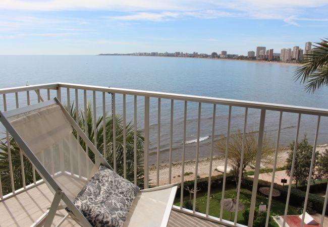 Appartement de vacances APARTAMENTO CABO AZUL (2117791), El Campello, Costa Blanca, Valence, Espagne, image 44