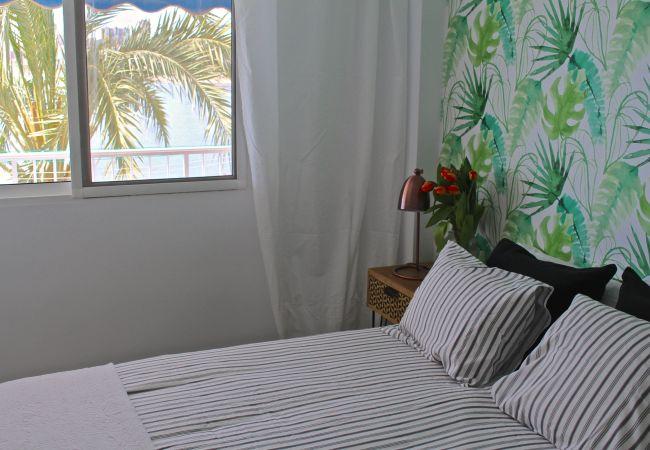 Appartement de vacances APARTAMENTO CABO AZUL (2117791), El Campello, Costa Blanca, Valence, Espagne, image 45