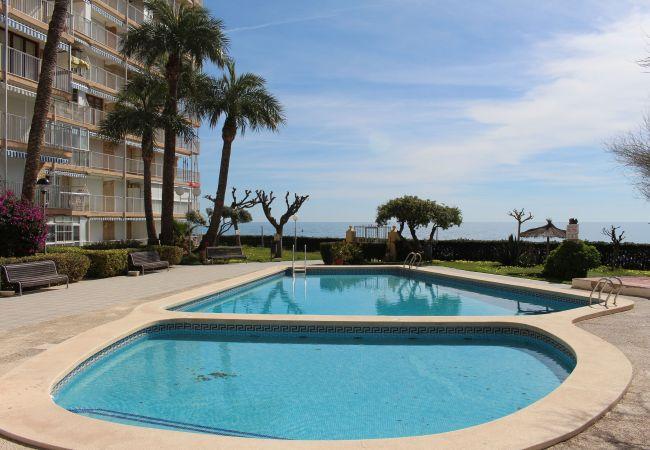 Appartement de vacances APARTAMENTO CABO AZUL (2117791), El Campello, Costa Blanca, Valence, Espagne, image 52