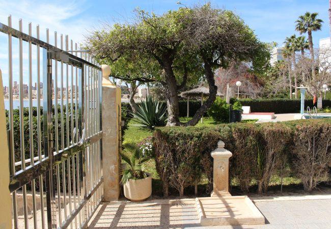 Appartement de vacances APARTAMENTO CABO AZUL (2117791), El Campello, Costa Blanca, Valence, Espagne, image 55