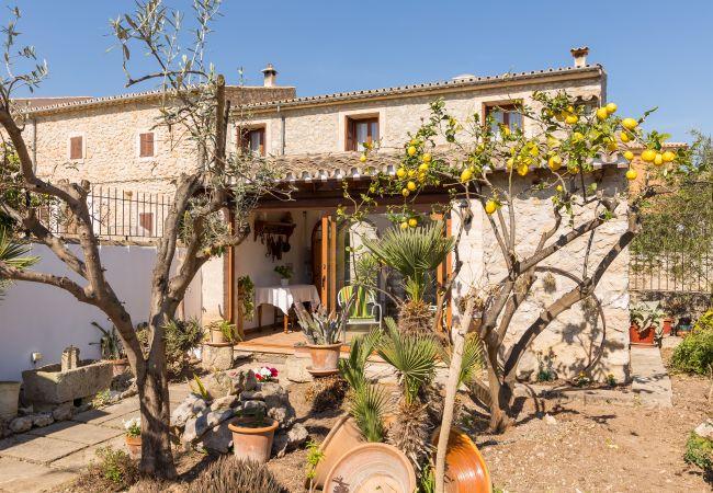 Ferienhaus Es Pujol (2126883), Campanet, Mallorca, Balearische Inseln, Spanien, Bild 18