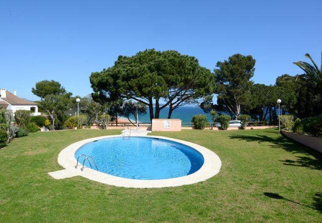 Ferienwohnung AVA SENIA 4-A (2126878), Begur, Costa Brava, Katalonien, Spanien, Bild 6
