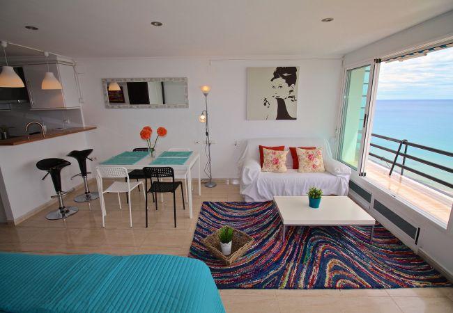 Appartement de vacances LOFT PLAYA MUCHAVISTA (2411657), El Campello, Costa Blanca, Valence, Espagne, image 2