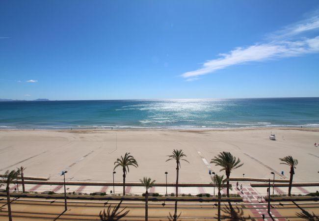 Appartement de vacances LOFT PLAYA MUCHAVISTA (2411657), El Campello, Costa Blanca, Valence, Espagne, image 3
