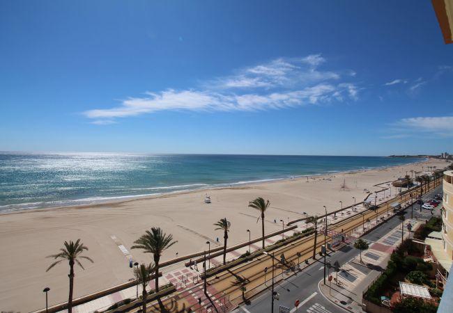 Appartement de vacances LOFT PLAYA MUCHAVISTA (2411657), El Campello, Costa Blanca, Valence, Espagne, image 4