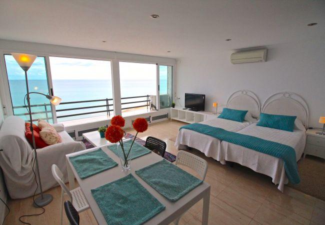 Appartement de vacances LOFT PLAYA MUCHAVISTA (2411657), El Campello, Costa Blanca, Valence, Espagne, image 6