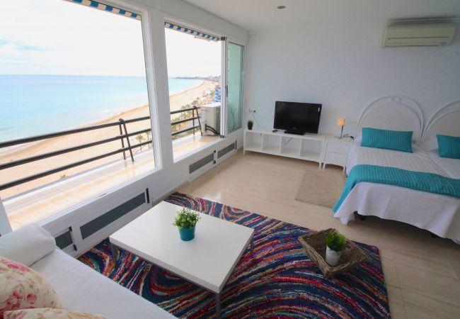 Appartement de vacances LOFT PLAYA MUCHAVISTA (2411657), El Campello, Costa Blanca, Valence, Espagne, image 7