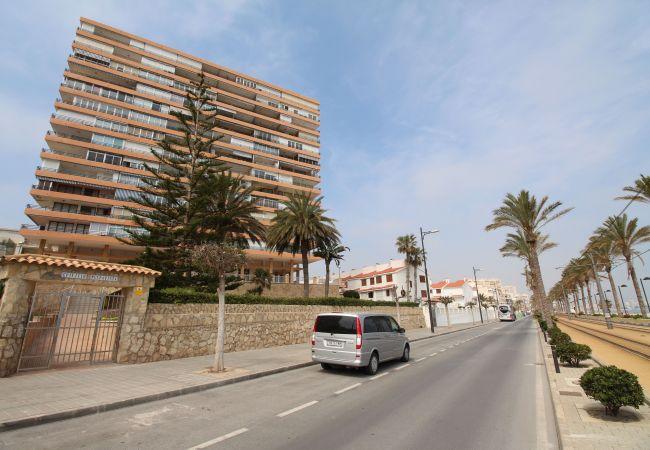Appartement de vacances LOFT PLAYA MUCHAVISTA (2411657), El Campello, Costa Blanca, Valence, Espagne, image 9