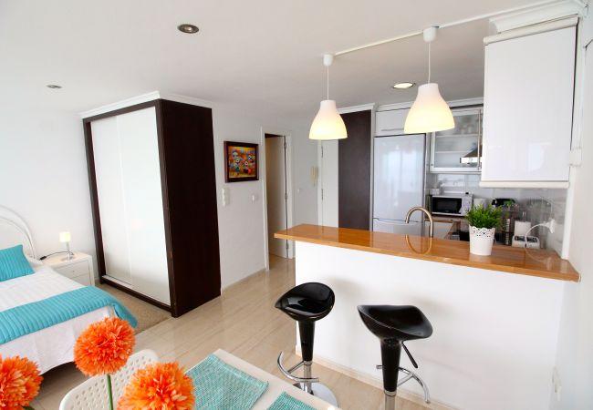 Appartement de vacances LOFT PLAYA MUCHAVISTA (2411657), El Campello, Costa Blanca, Valence, Espagne, image 14