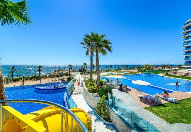 Ferienwohnung Yulia (2146305), Torrevieja, Costa Blanca, Valencia, Spanien, Bild 23