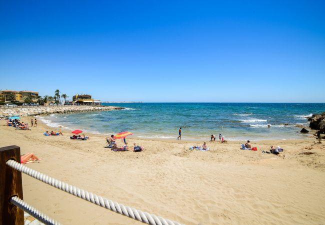 Ferienwohnung Yulia (2146305), Torrevieja, Costa Blanca, Valencia, Spanien, Bild 49