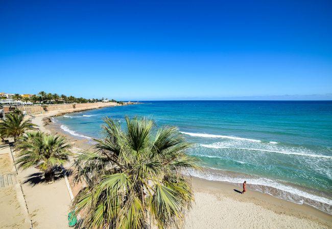 Ferienwohnung Yulia (2146305), Torrevieja, Costa Blanca, Valencia, Spanien, Bild 44